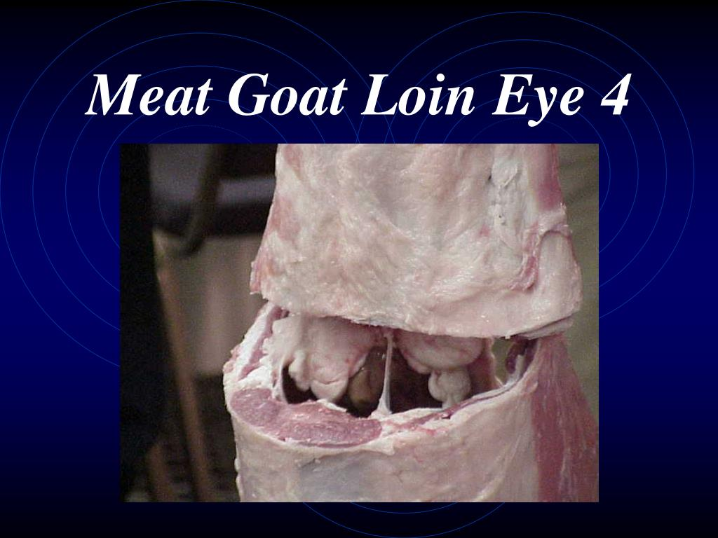 Meat Goat Loin Eye 4