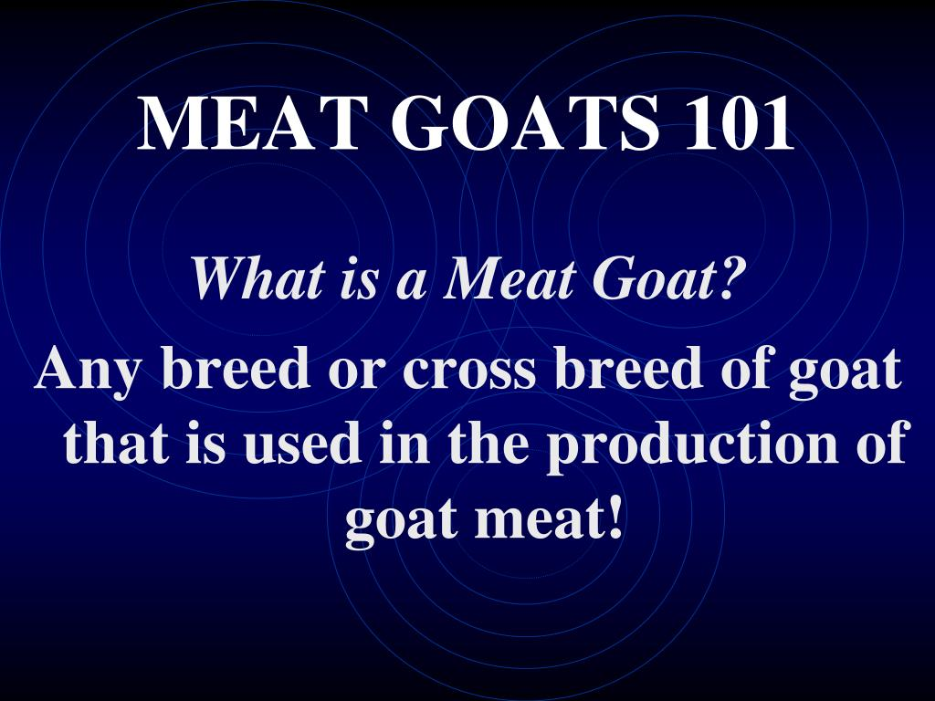 MEAT GOATS 101