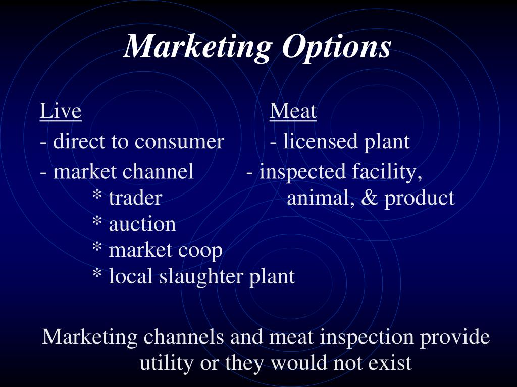 Marketing Options