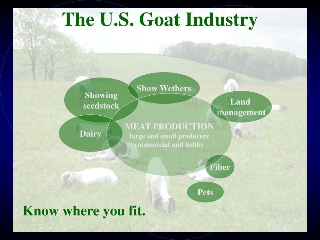 The U.S. Goat Industry