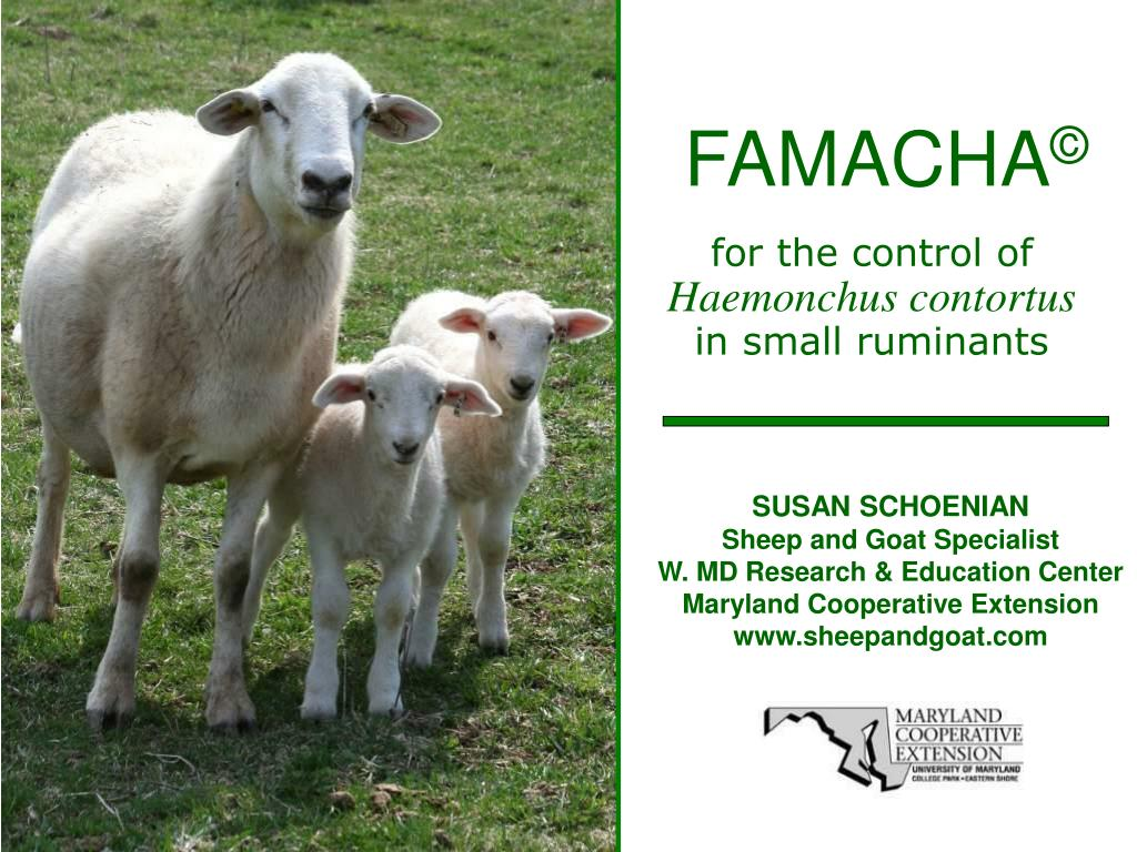FAMACHA