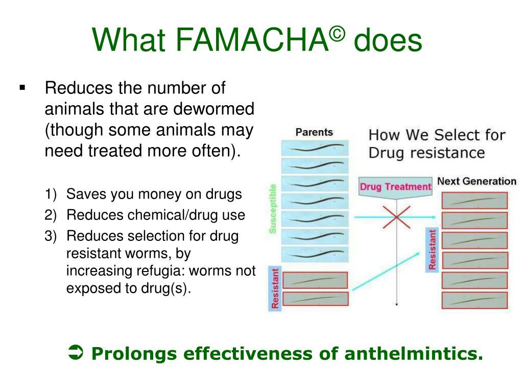 Reduces the number of animals that are dewormed (though some animals may need treated more often).