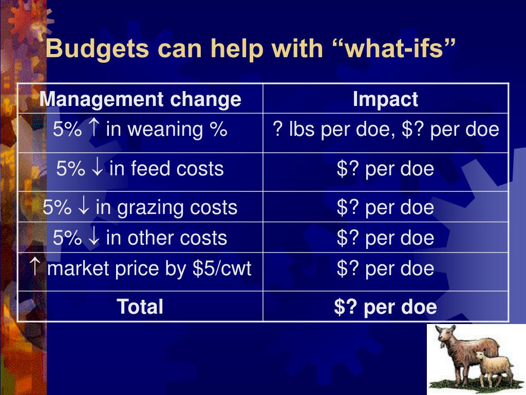 "Budgets can help with ""what-ifs"""