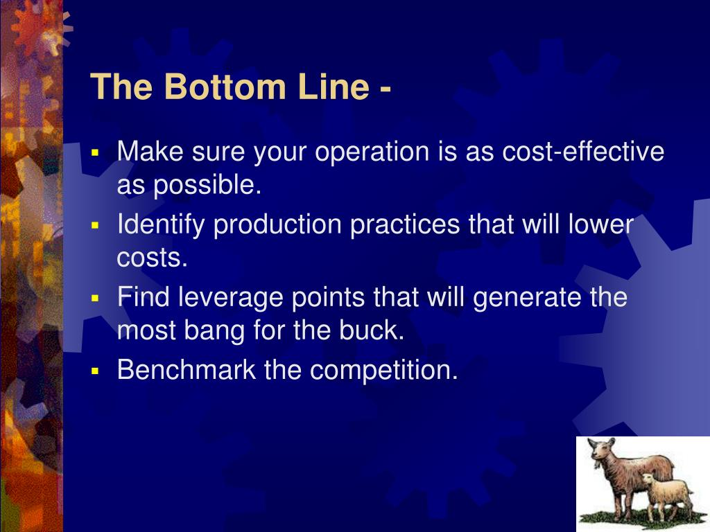 The Bottom Line -