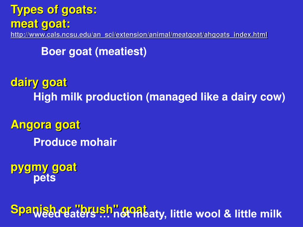 Types of goats: