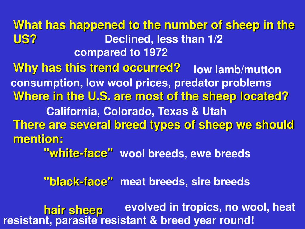 What has happened to the number of sheep in the US?