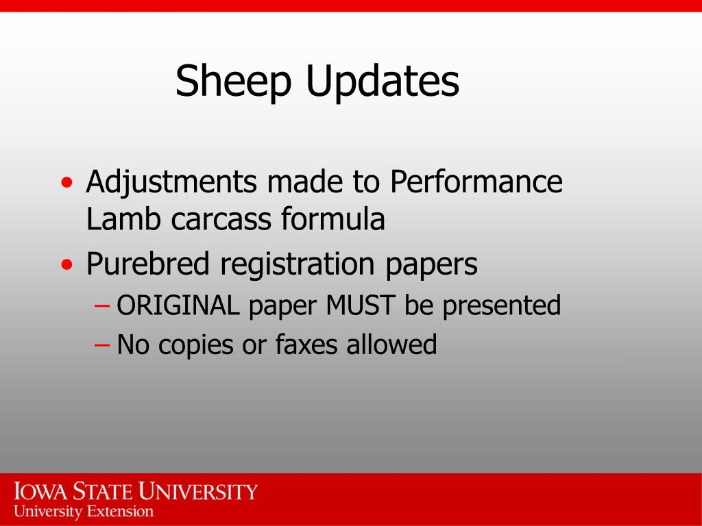 Sheep Updates