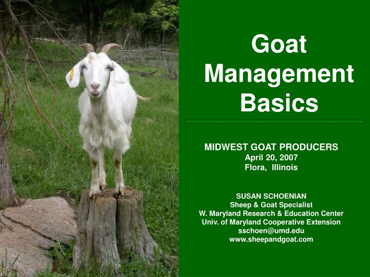 Goat management basics
