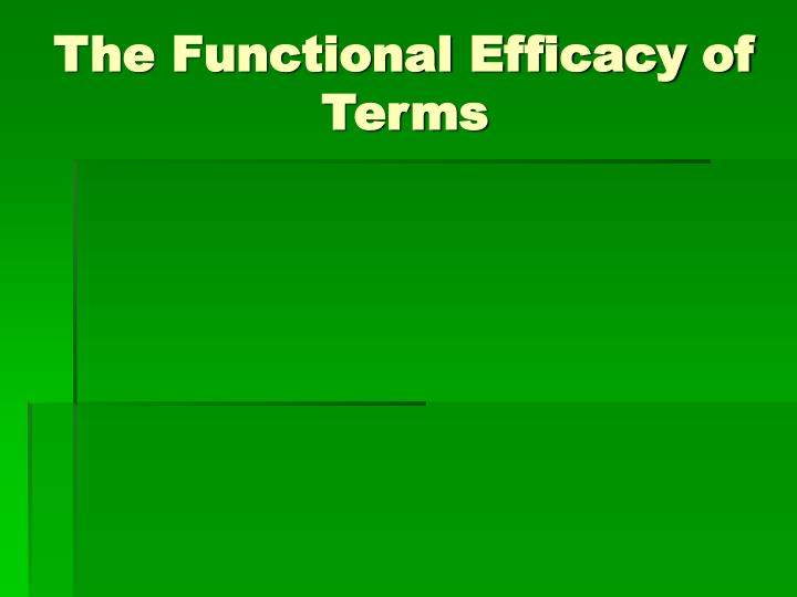 The Functional Efficacy of Terms