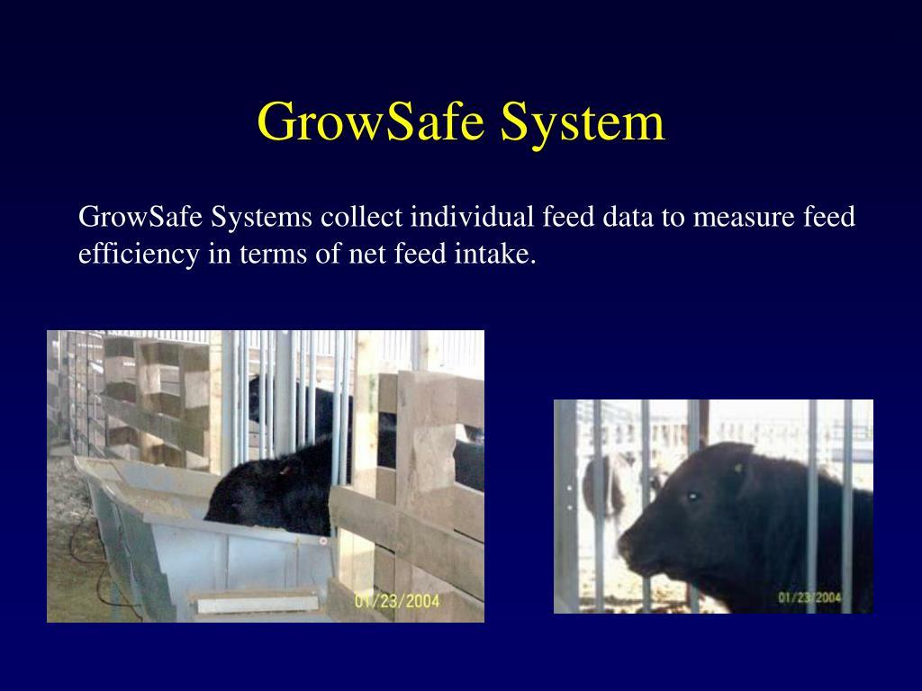 GrowSafe System