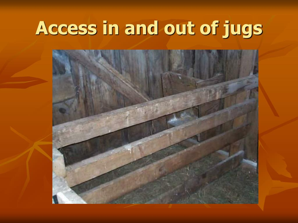 Access in and out of jugs