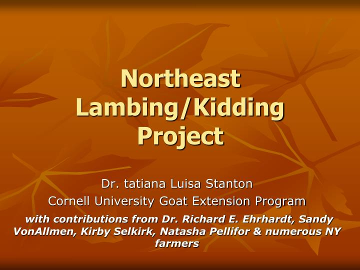 Northeast lambing kidding project