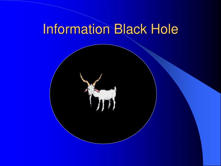 Information black hole