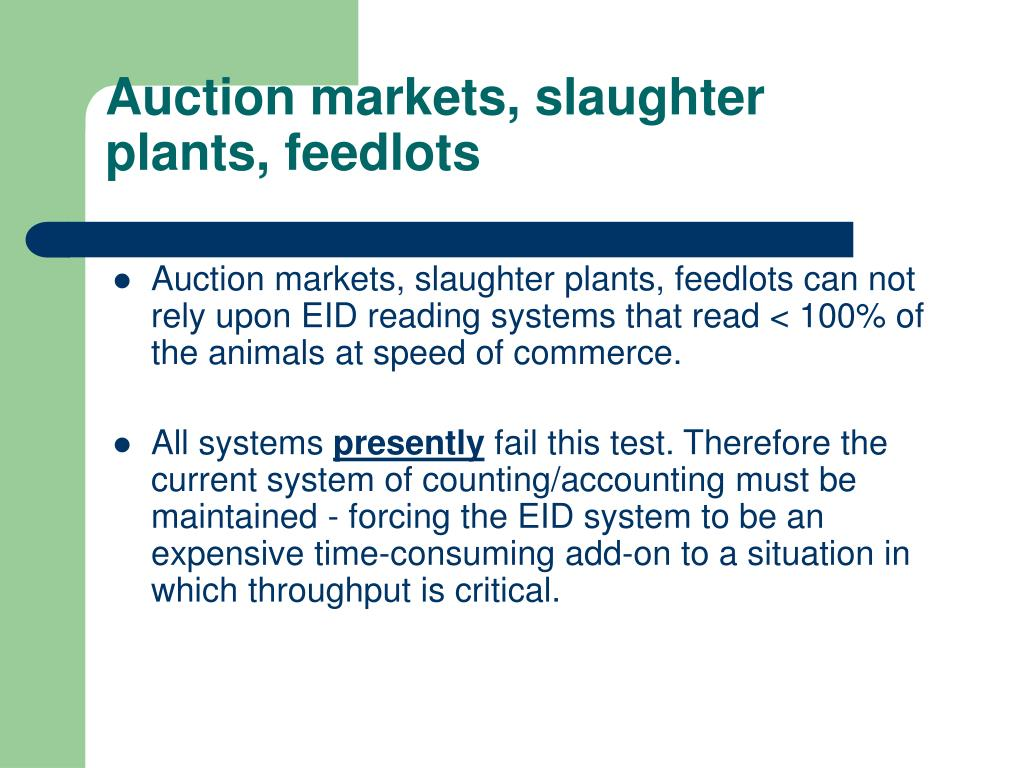 Auction markets, slaughter plants, feedlots