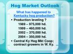 hog market outlook