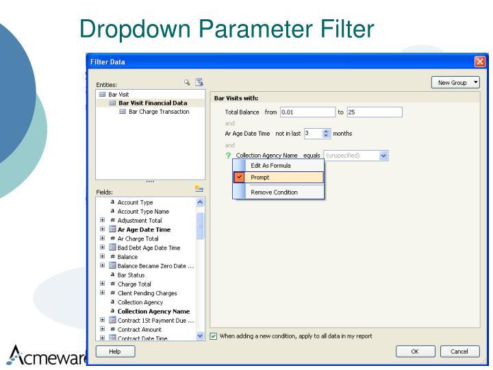 Dropdown Parameter Filter