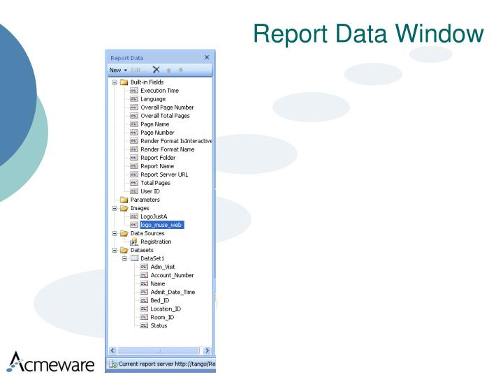 Report Data Window