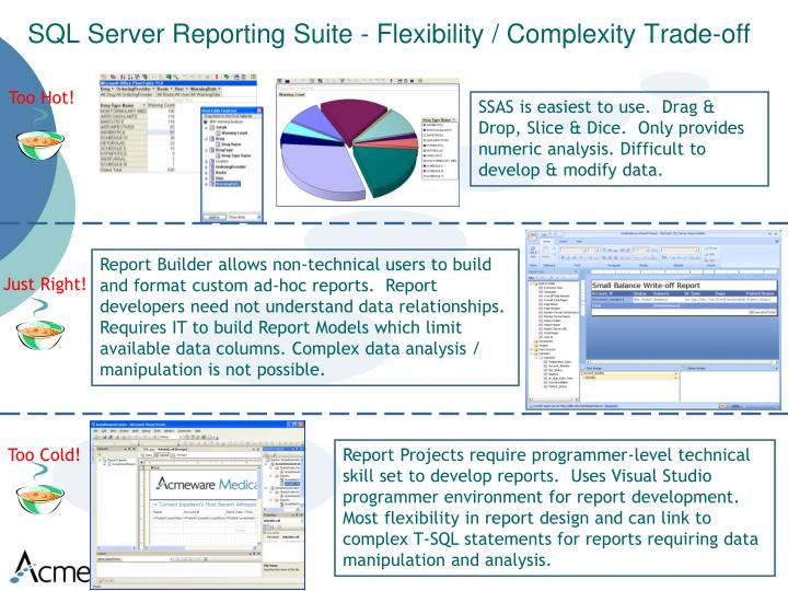 SQL Server Reporting Suite - Flexibility / Complexity Trade-off