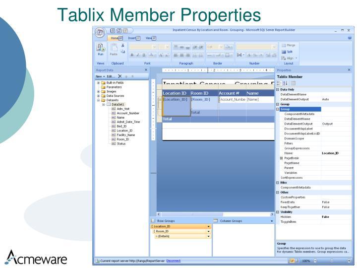 Tablix Member Properties