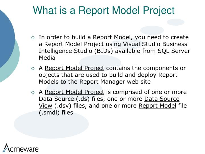 What is a Report Model Project