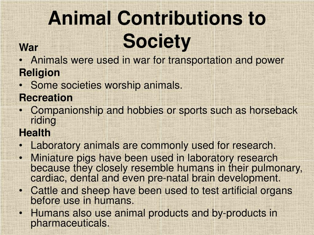 Animal Contributions to Society