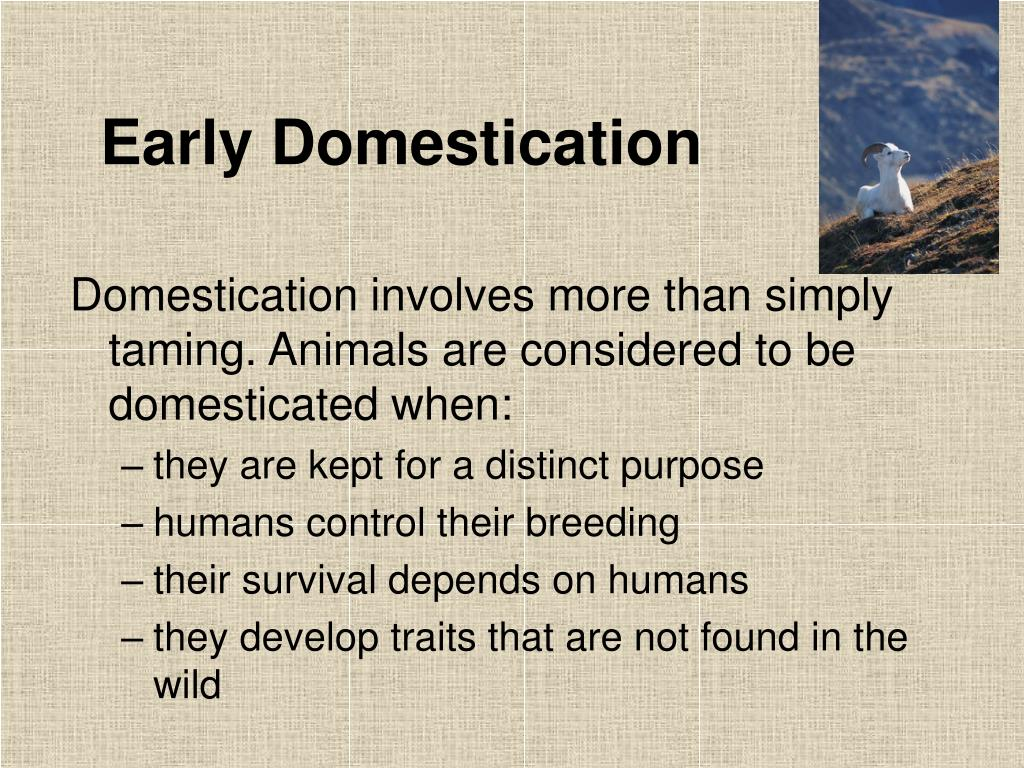 Early Domestication