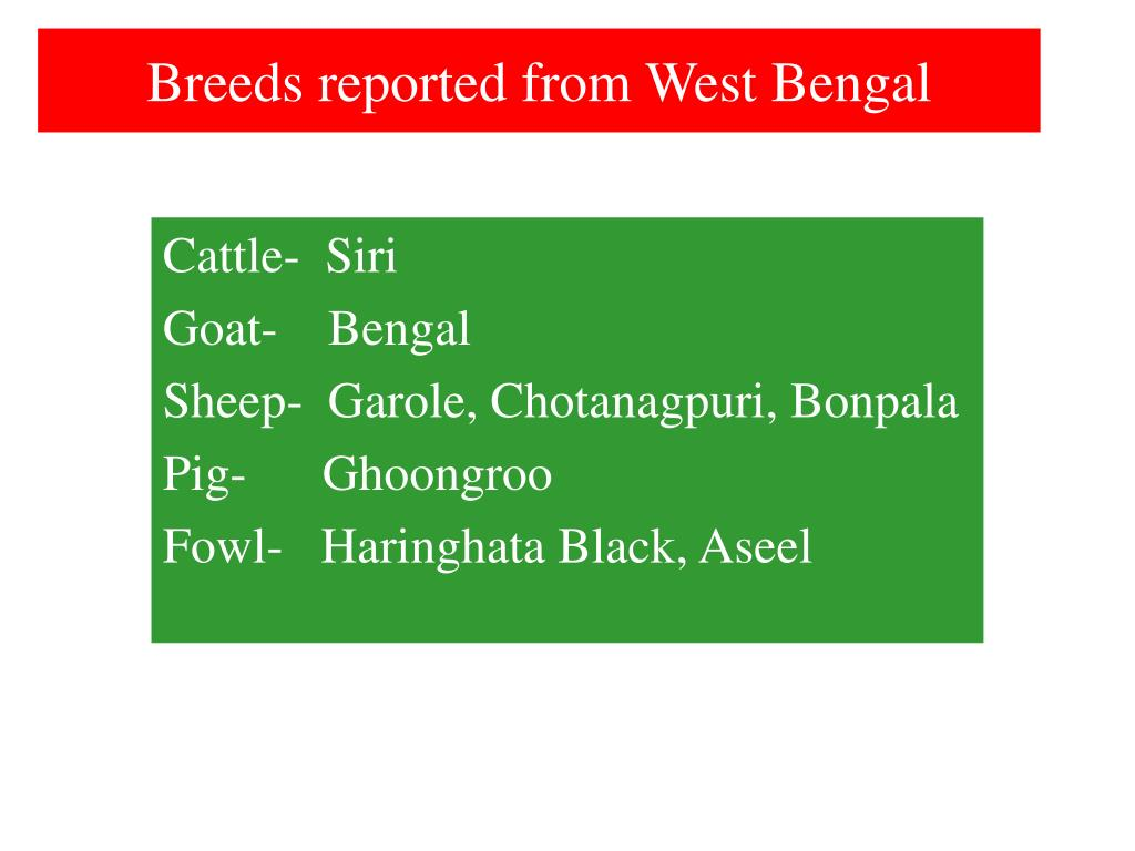Breeds reported from West Bengal