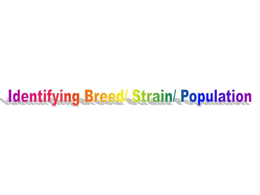 Identifying Breed/ Strain/ Population