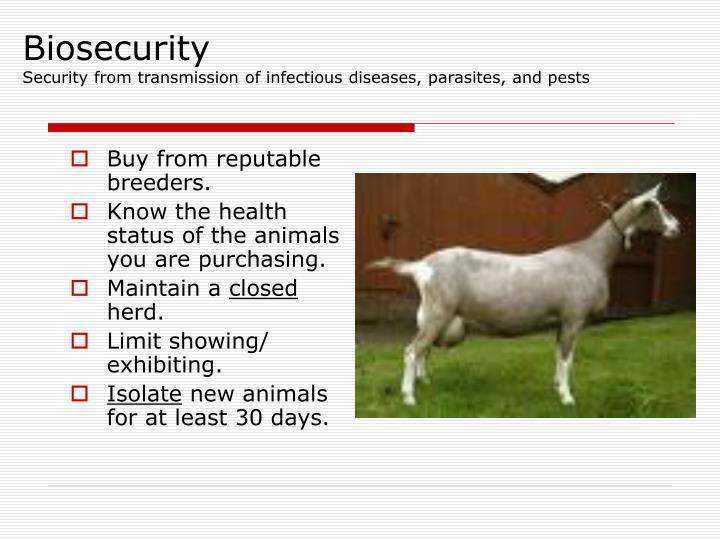 Biosecurity security from transmission of infectious diseases parasites and pests