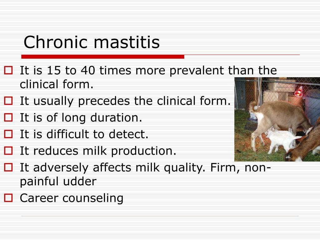 Chronic mastitis