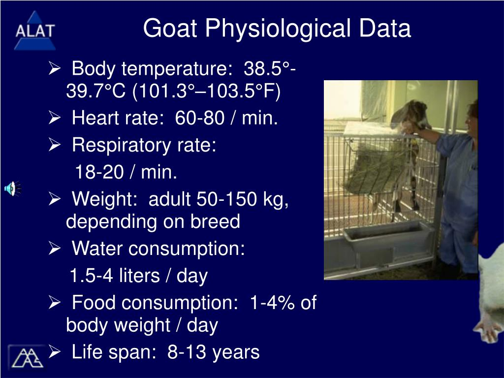 Goat Physiological Data