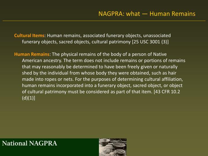 NAGPRA: what — Human Remains