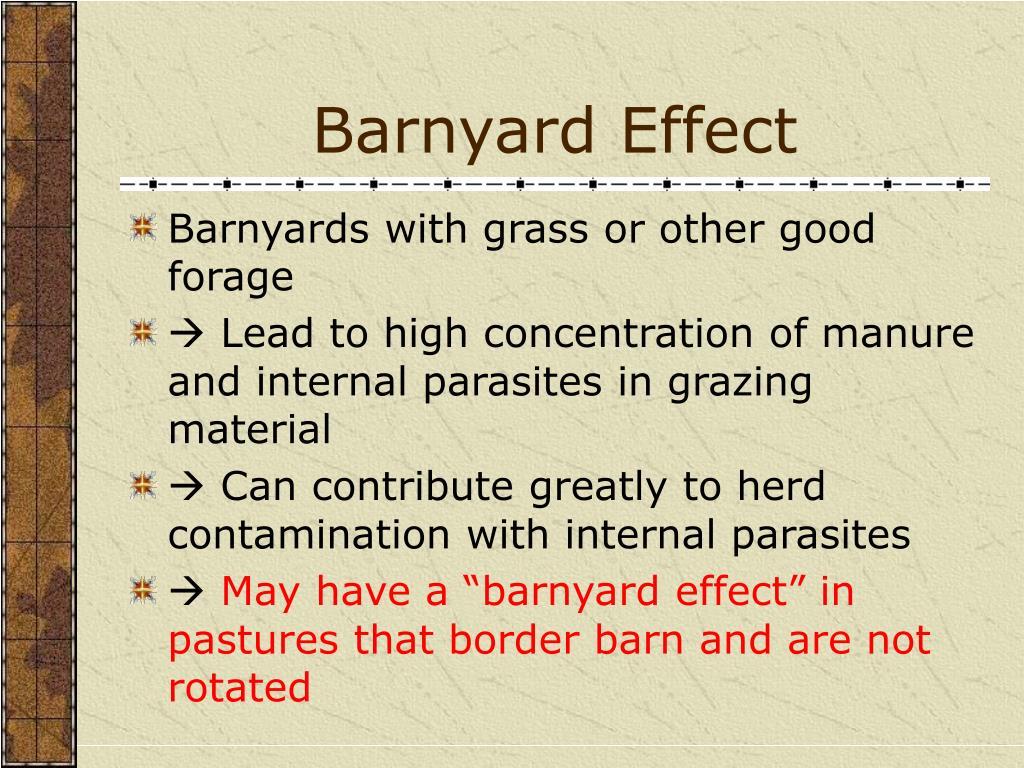 Barnyard Effect