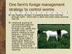 one farm s forage management strategy to control worms