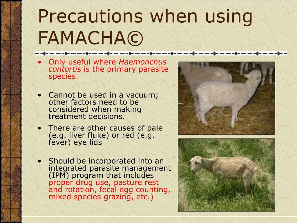 Precautions when using FAMACHA©