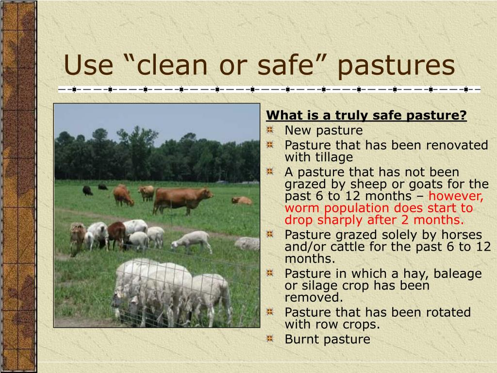 "Use ""clean or safe"" pastures"