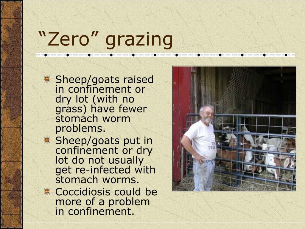 """""""Zero"""" grazing"""