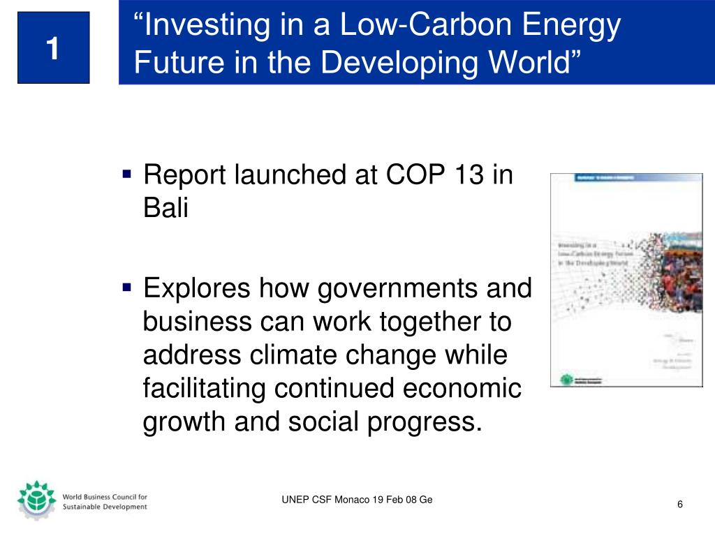 """Investing in a Low-Carbon Energy Future in the Developing World"""