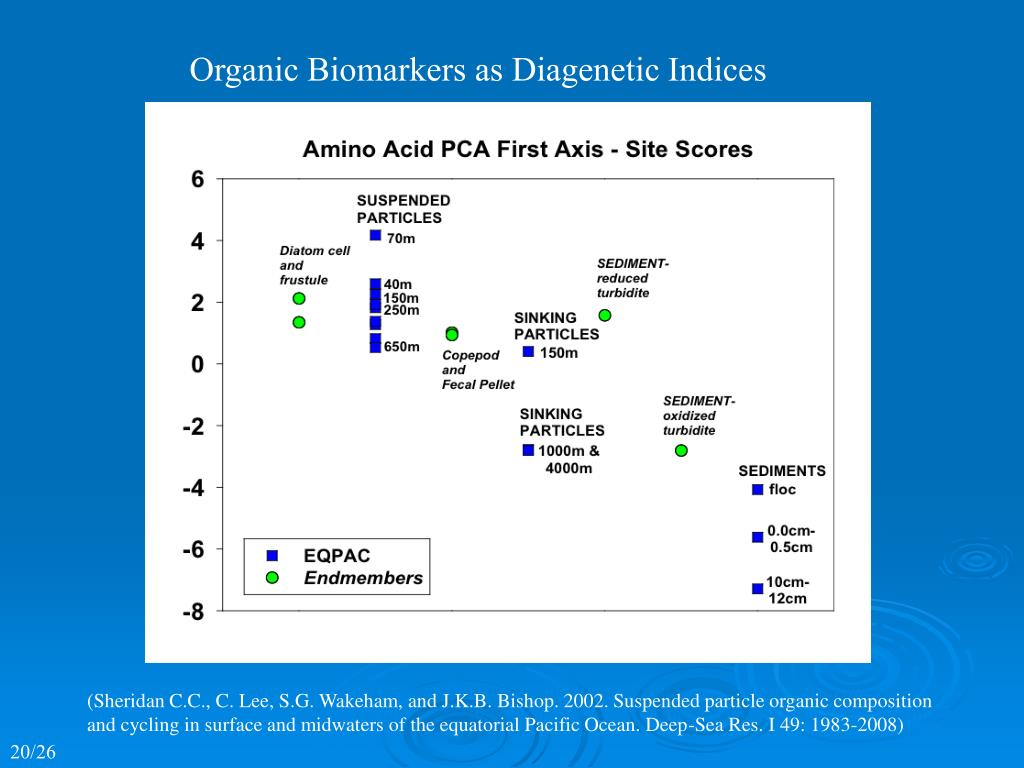 Organic Biomarkers as Diagenetic Indices