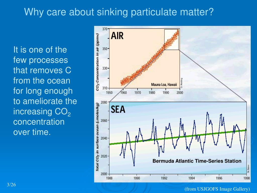 Why care about sinking particulate matter?