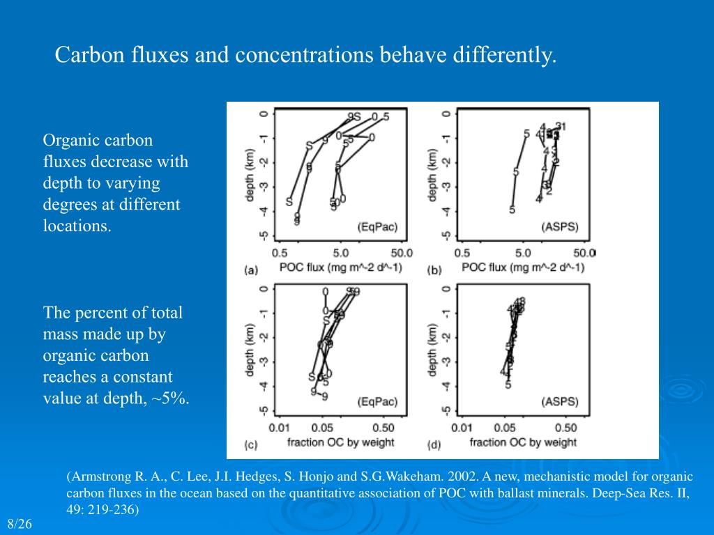 Carbon fluxes and concentrations behave differently.
