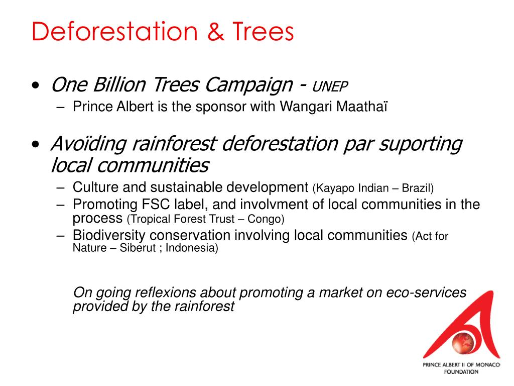 Deforestation & Trees