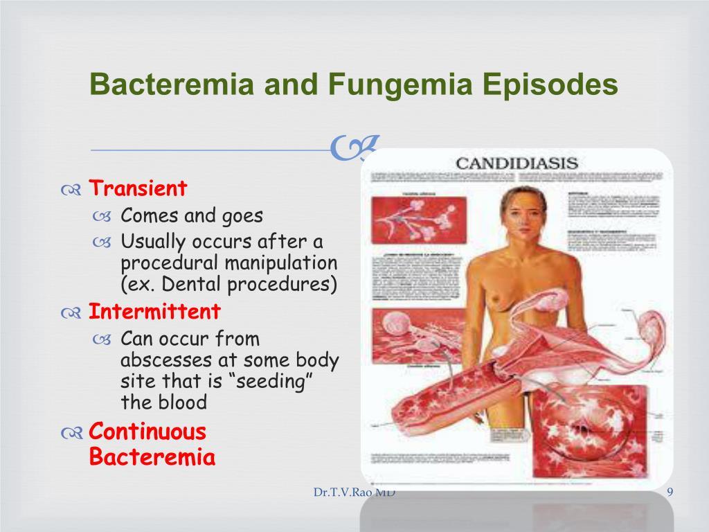 Bacteremia and Fungemia Episodes