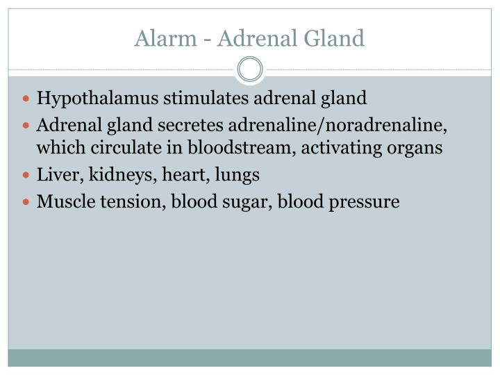 Alarm - Adrenal Gland