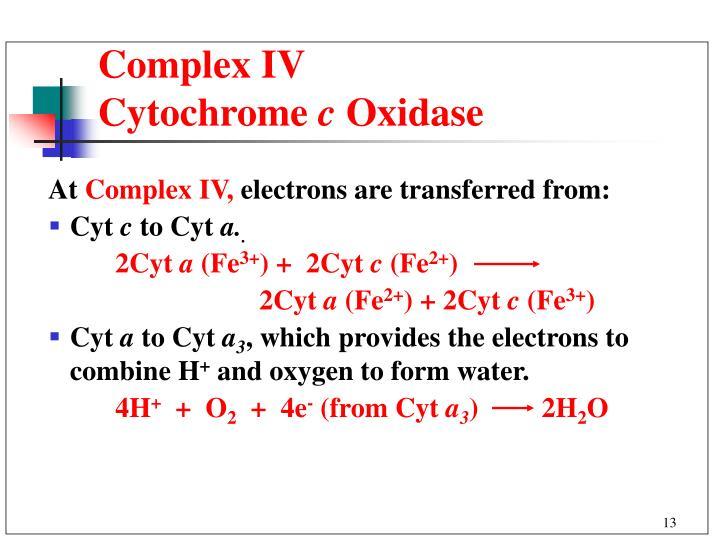 Complex IV