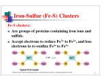 iron sulfur fe s clusters