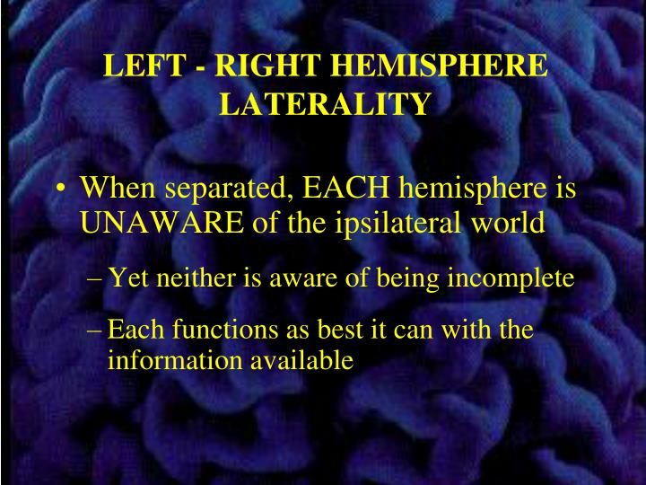 LEFT - RIGHT HEMISPHERE LATERALITY