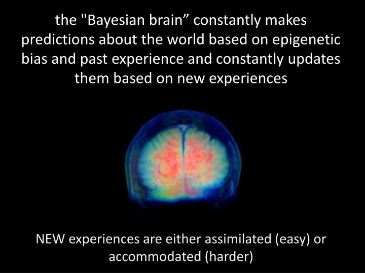 "the ""Bayesian brain"" constantly makes predictions about the world based on epigenetic bias and past experience and constantly updates them based on new experiences"