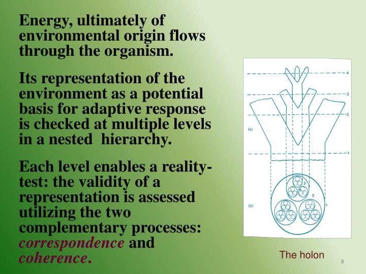 Energy, ultimately of environmental origin flows through the organism.