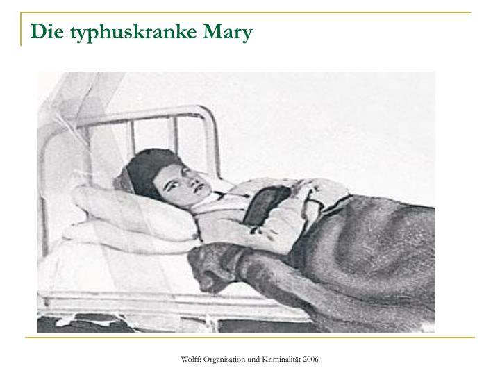 Die typhuskranke Mary